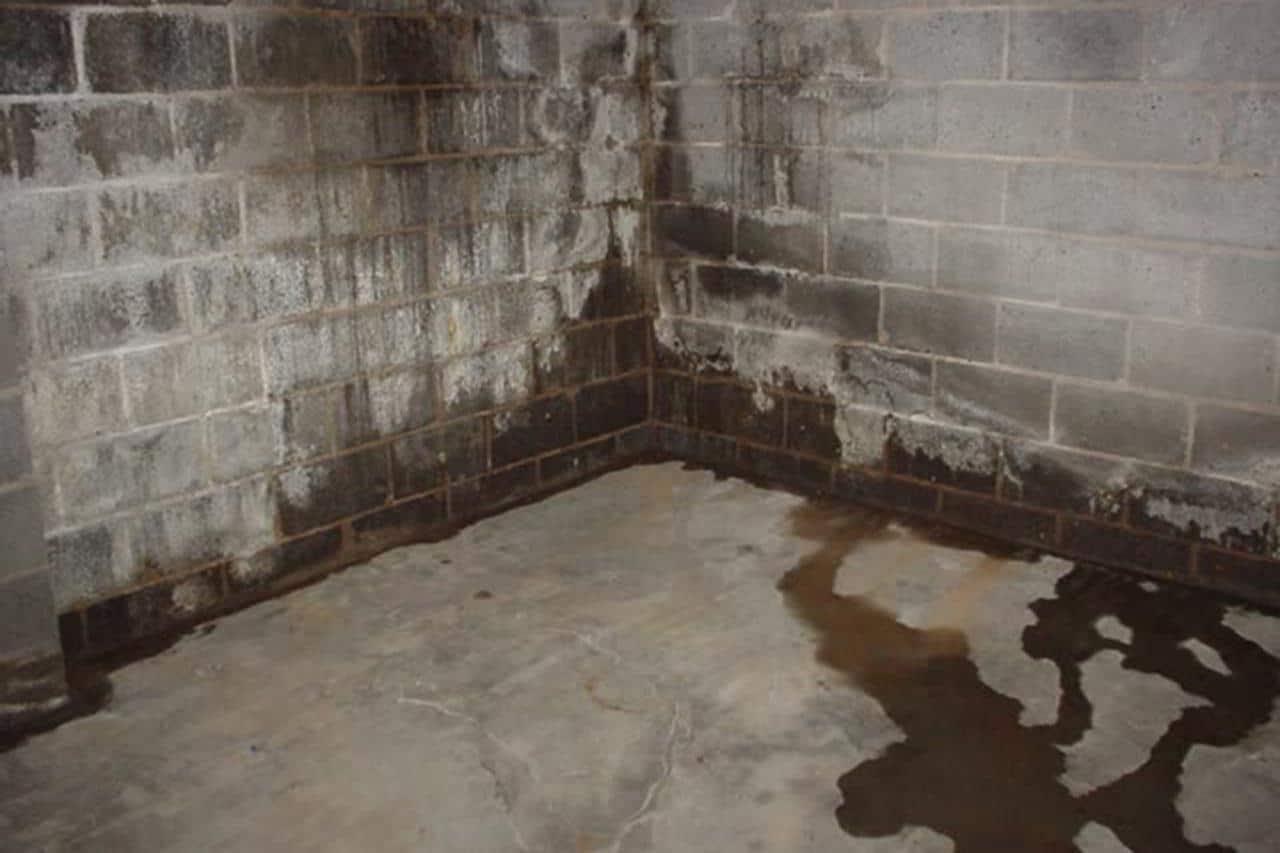Tình trạng thấm nước của tường nhà